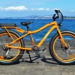 offerta bici elettriche ischia 7